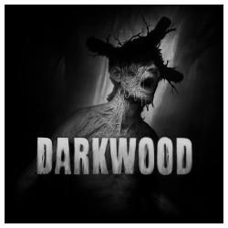Darkwood - PS4